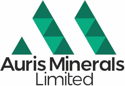 Auris Minerals Logo 440
