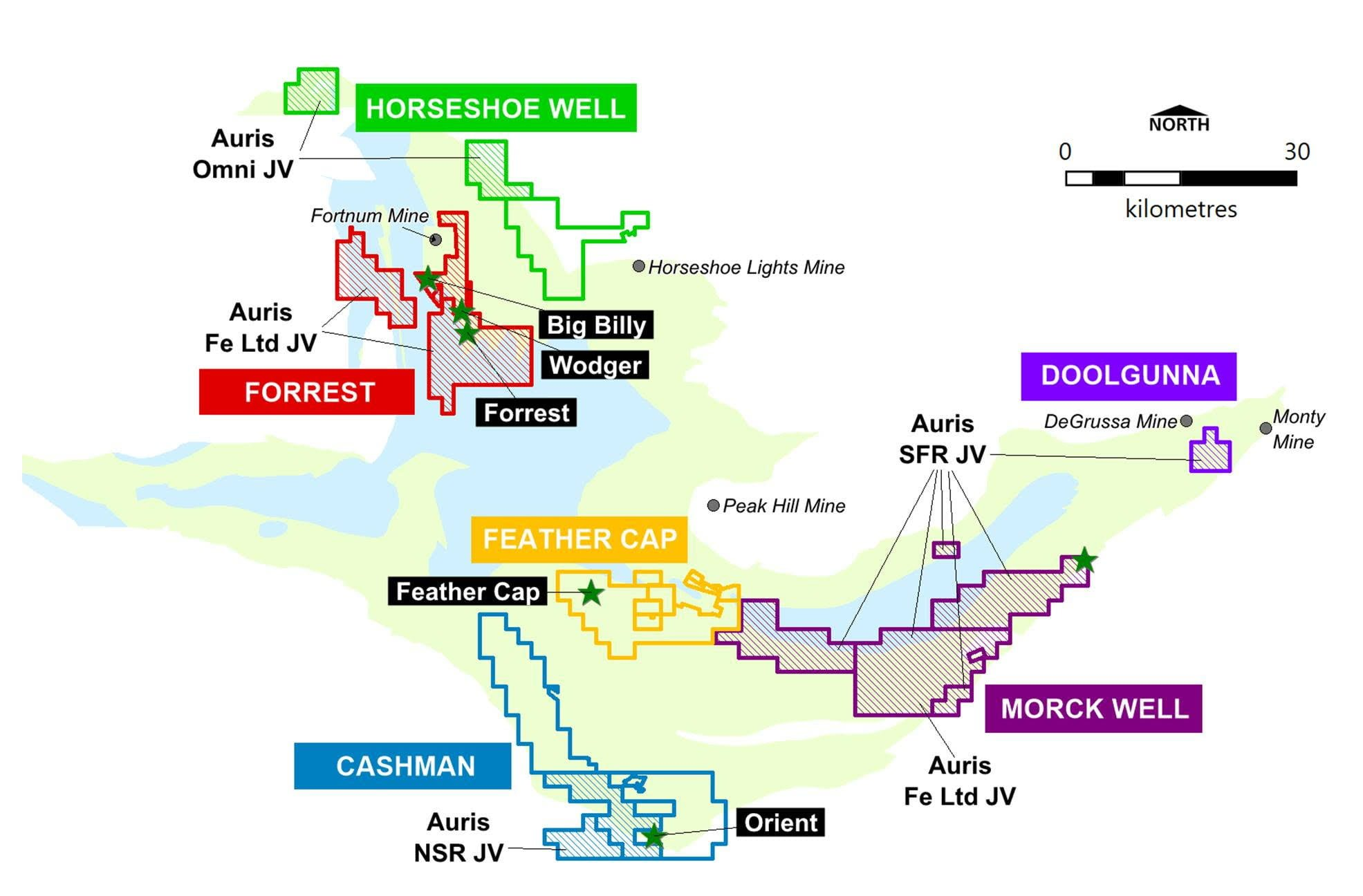 Auris map